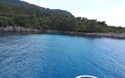 Pegasus Boat Fethiye (6)